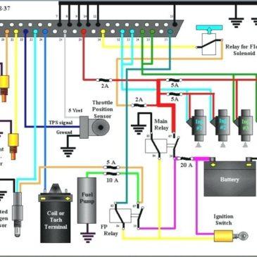 BMW ECU Wiring diagrams
